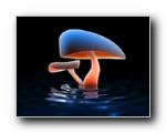 Mushroom Lake