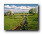 内华达州 风景壁纸