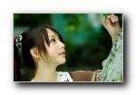 精选壁纸 2010/07/11(共3909次)