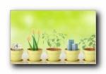 绿色清新大自然健康护眼宽屏壁纸(共9699次)
