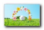 绿色清新大自然健康护眼宽屏壁纸(共3703次)