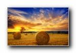 秋之收割:草原上丰收的草卷