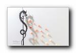 羽毛艺术设计中国风宽屏壁纸
